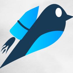 Social-Media-Startup-Launch